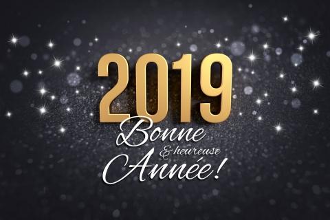 Meilleurs vœux 2019, actualité du Groupe Pigeon