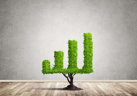 Le BTP a atteint les premiers objectifs de l'engagement pour la croissance verte, actualité du Groupe Pigeon