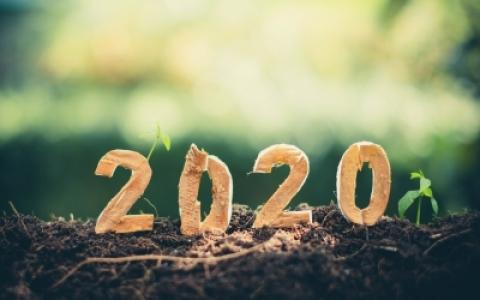 Le groupe Pigeon vous souhaite une belle et heureuse année 2020, actualité du Groupe Pigeon